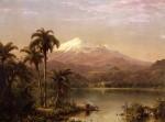 Tamaca Palms 1854