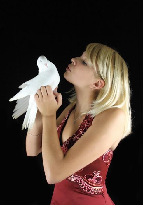 Девушка с голубем - Сергей Кодр