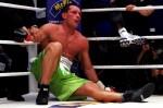 WBC Супертяжелый Чемпионат мира по боксу. Бой между Виталием Кличко из Украины и Альбертом Сосновским из Польши на Veltins Арене в Гельзенкирхене, Германия, 29 мая 2010 года.