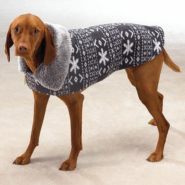 Бесплатная вязаная одежда для собак