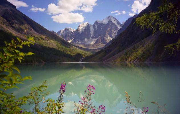 Алтай - обширная горная страна.