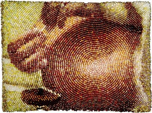 Amy Clarke Moore создает картины из бисера.  Трудно себе представить, что ее работы сотканы из мельчайших...