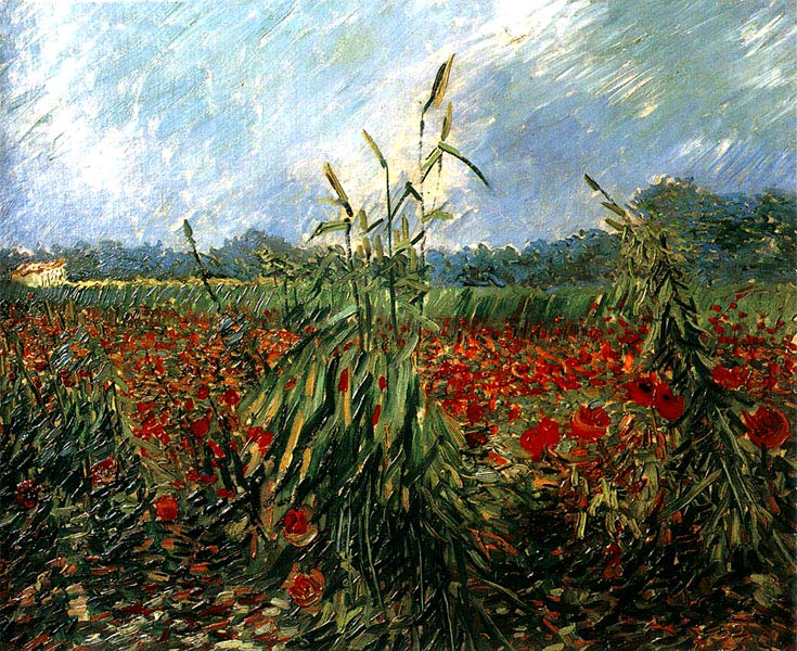 http://img1.liveinternet.ru/images/foto/b/3/337/2406337/f_14475217.jpg