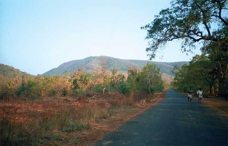 Типичный пейзаж Андхра-Прадеш