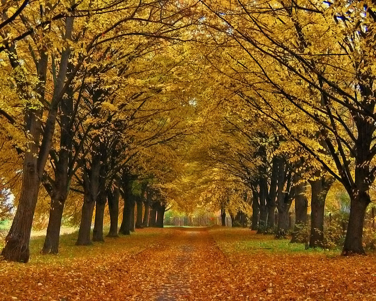 http://img1.liveinternet.ru/images/foto/b/3/573/3031573/f_17240914.jpg