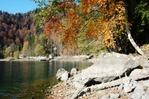 Посмотреть все фотографии серии Озеро Рица осенью.