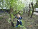 Посмотреть все фотографии серии Первая весна!