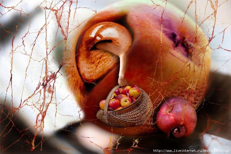 Глазные яблоки.