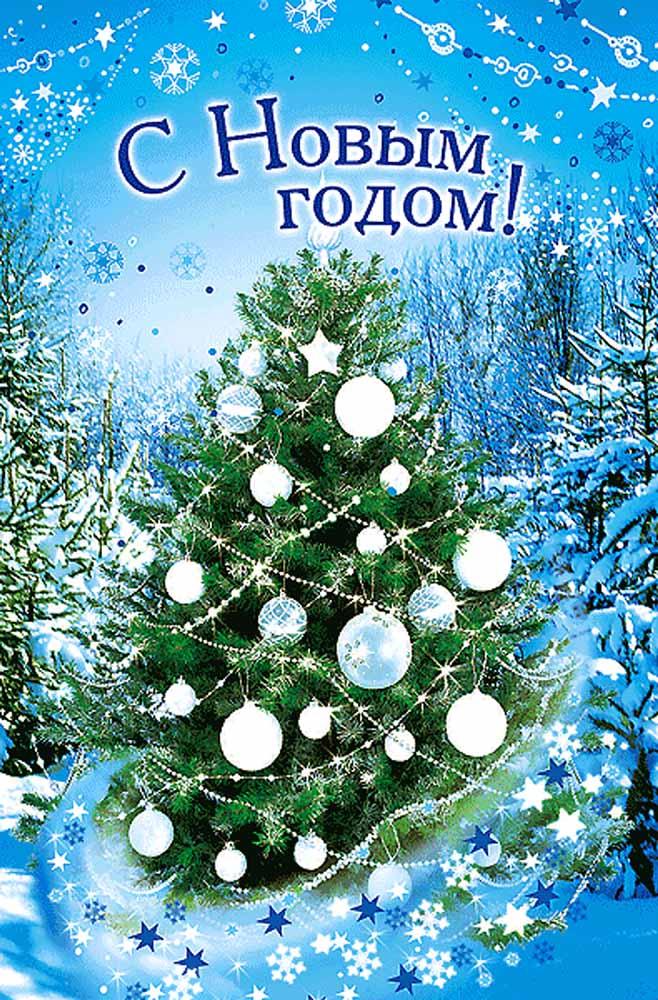 С Новым Годом поздравляю, и от всей души желаю, Чтобы большой в гале