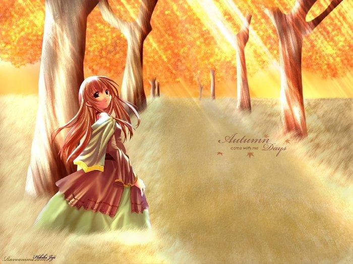 Солнечный лес F_12870490