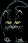 Тэги. котик. на черной. вышивка крестом.