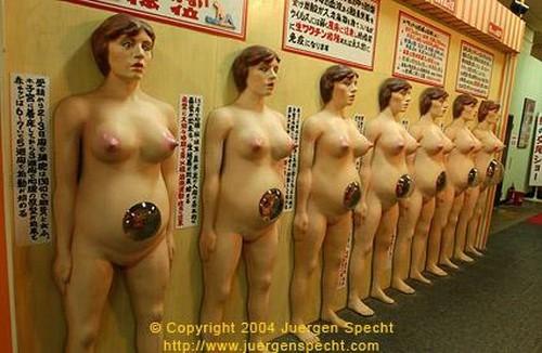 Музей истории секса и сексуальных извращений в японском городе Хинокан.
