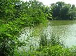 Берминводы-07.2009. Озеро в жаркий зной...