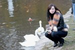 Я и Лебедя)