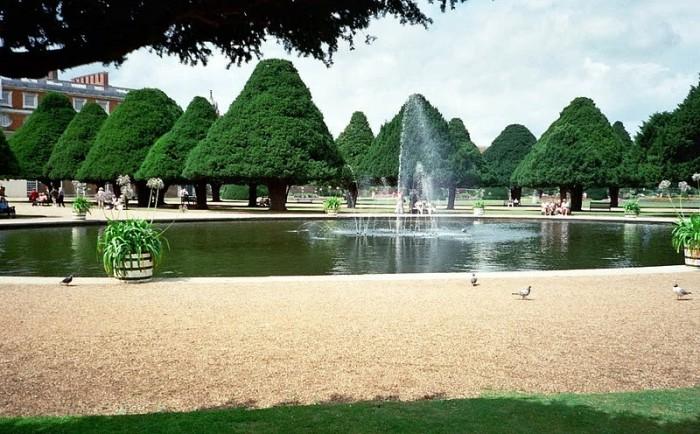 Сад дворца Хэмптон-Кор 67033
