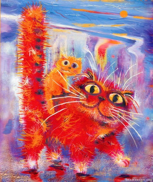 Купание красного кота