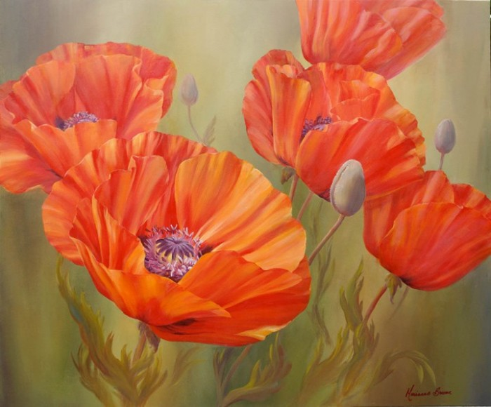 Poppy Dance II