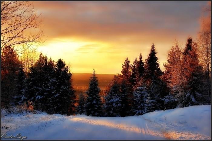 VinterSaga