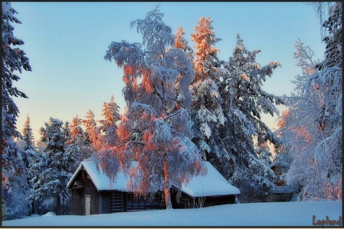 Красивейшие сказочные зимние пейзажи, словно нарисованные кистью великого мастера белыми красками - красота...