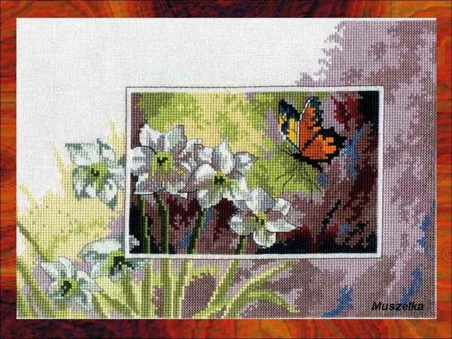 Butterfly & White Flowers 1 (700x501, 74Kb) .