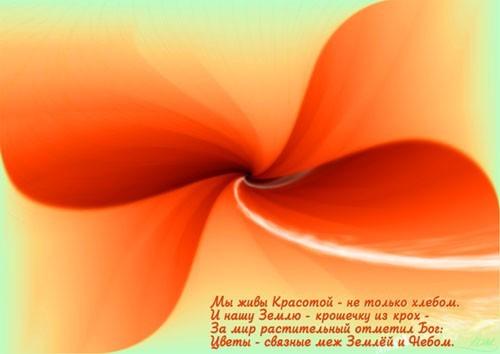 Цветок - гимн красоте, повышающий частоту вибраций человека, способствующий как духовному, так и физическому оздоровлению человека