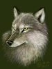 [+] Увеличить - Волк