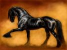 Посмотреть все фотографии серии Лошади