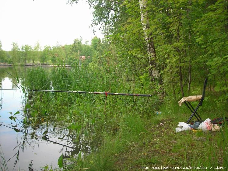рыбалка на луковом озере в ногинском районе