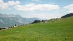 """[+] Увеличить - """"те самые"""" Альпийские луга, где пасутся бархатные коровки и живут гномы, делающие шоколад."""