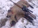 Посмотреть все фотографии серии и снова охота