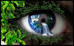 [+] Увеличить - Глаз 1