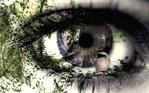 [+] Увеличить - Глаз 2