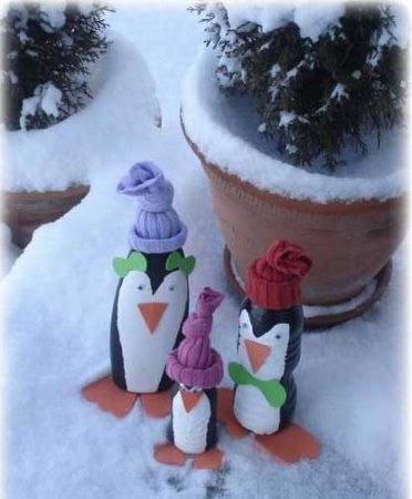 для зимнего сада
