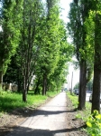 улицы г Курска