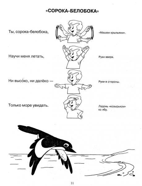 Сорока -ворона