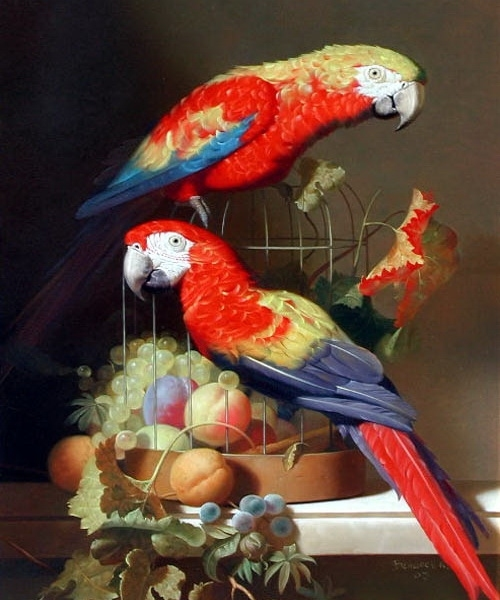 Цветы и попугаи от Catherine