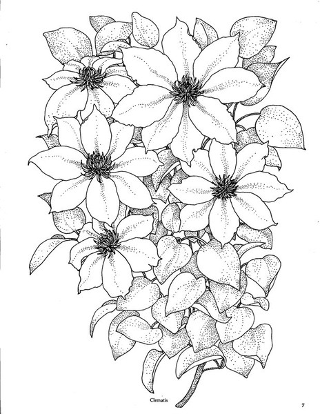 Рисуем букет цветов из
