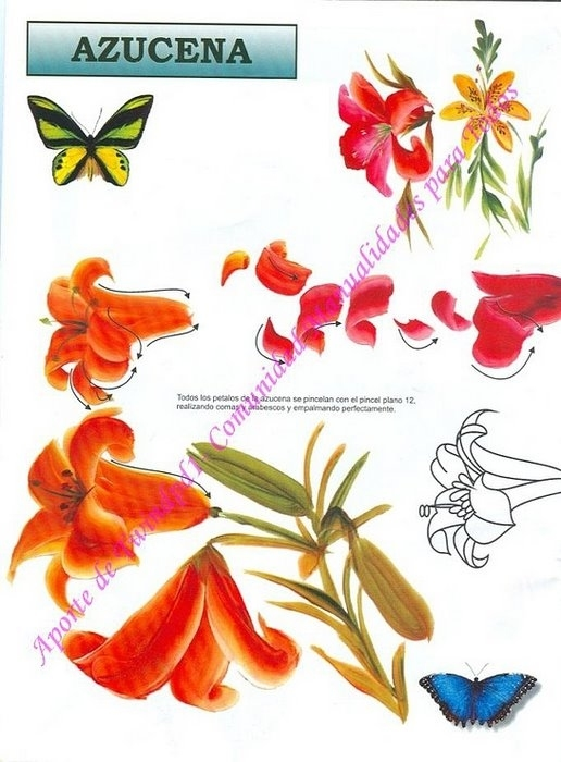 Журнал по рисованию роз. 3723459_173474--38706518-m750x740-u1d7c4