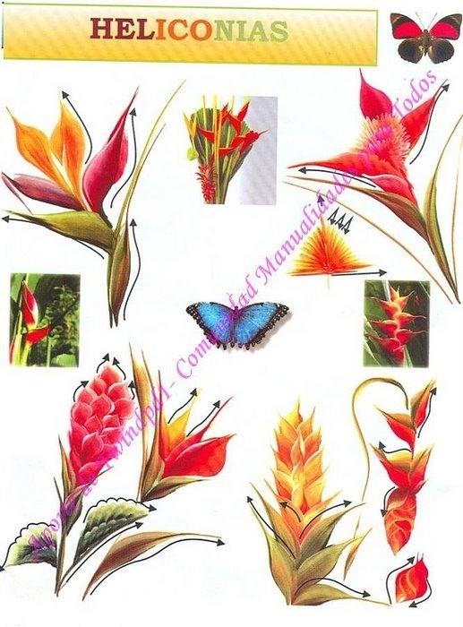 Журнал по рисованию роз. 3723463_173474--38706522-m750x740-ueee25