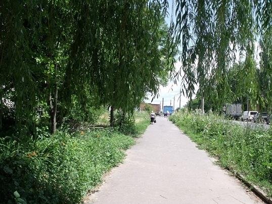 улицы Курска