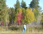 Я и Осень