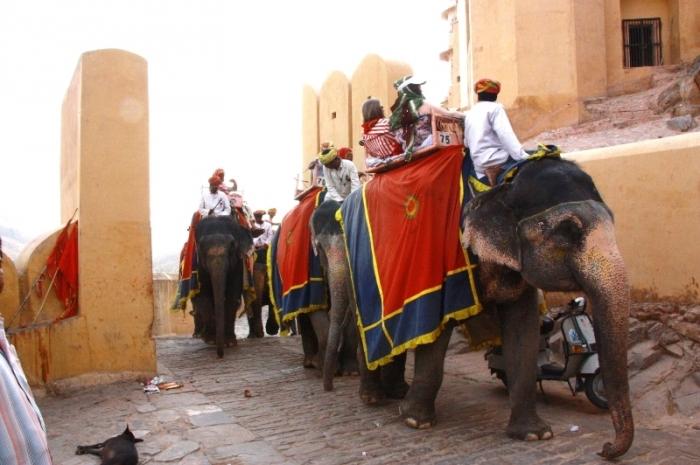 Если кому затруднительно подниматься вверх к дворцовому комплексу, слоны могут доставить до места, где продают билеты и ходят услужливые гиды.