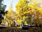 Курск-краски осени