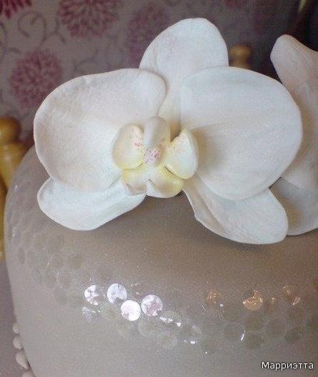 Как сделать орхидею из мастики: мастер класс с фото и видео