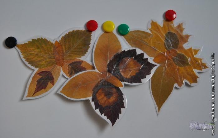 рисунок осенний лист бабочки и фрукты