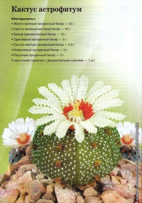 Вирко Елена - Цветы из бисера.  Комнатные и садовые(Беспроволочная техника плетения) 2011_56 (494x700, 68Kb) .