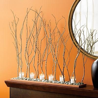ветви и листья. камни. натуральная зелень. дары моря. изображение природных элементов.  Речь пойдет о 5 декоративных...