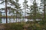 Посмотреть все фотографии серии Очарованье северной природы