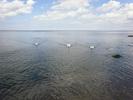 Посмотреть все фотографии серии Балтика.