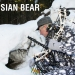 BEAR MOTIVE-6 - Bear Archery  www.arbalet.ru 